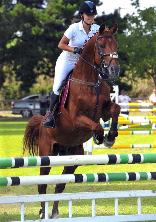 Equitazione, campionati regionali: la reggina Alessia Imbalzano conquista l'argento
